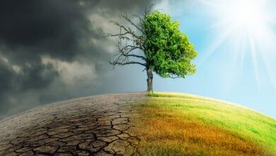صورة الدروس المستفادة من جائحة كورونا للتصدي للتغير المناخي