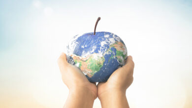 صورة إعادة تصميم نظام القطاع الغذائي