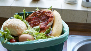صورة معالجة مشكلة هدر الطعام من جوانبها المختلفة