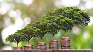 صورة بناء مؤسسة اجتماعية مستدامة مالياً ضمن الأسواق الناشئة