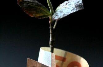 صورة النموذج غير الربحي المبتكَر والذي يحقق الاستدامة المالية
